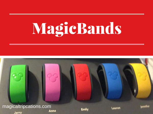 Top three Disney terms: My Disney Experience, MagicBands, FastPass+, OH MY!